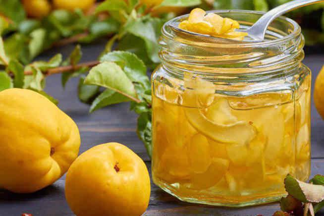 آیا مفیدترین میوه فصل پاییز را میشناسید