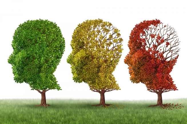 تدابیری برای پیشگیری از ابتلا به آلزایمر